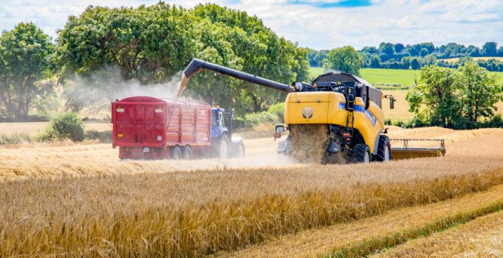 winter barley harvest keeling