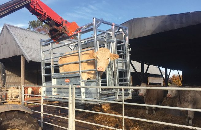 Pics: Could this portable frame make suckler calving a lot easier