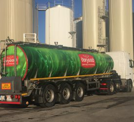 Dairygold reveals its 2021 bean contract price