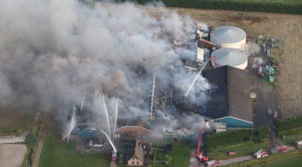 Video: 20,000 pigs die in devastating Dutch farm fire