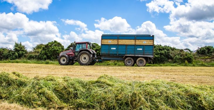Cut to clamp: The one-stop guide to cutting, wilting and picking up silage