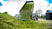 Grass growth: Onwards and upwards from here