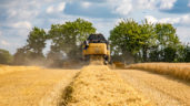 Can you make or save €50/ac in 2018 on your tillage farm?