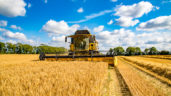 Boortmalt announces Fix Price offer for farmers