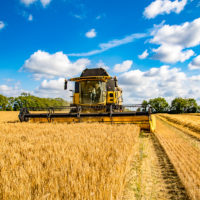Boortmalt announces new fixed-price offer for farmers
