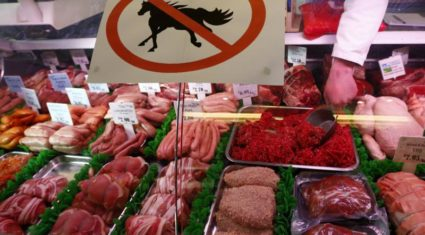 Horsemeat scandal unfolds in Europe, with links to previous Irish saga