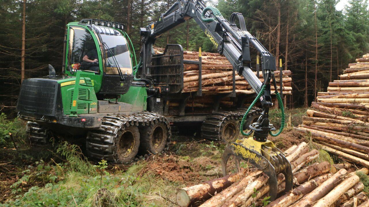 1,000 jobs 'immediately at risk' in €2 billion forestry sector