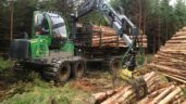 'Sawmills have run out of timber and people are being laid off'