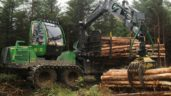 Farmers 'worried' about level of foreign forestry investment