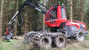 'Backlog of over 1,500 applications': Issue of felling and forestry licences raised