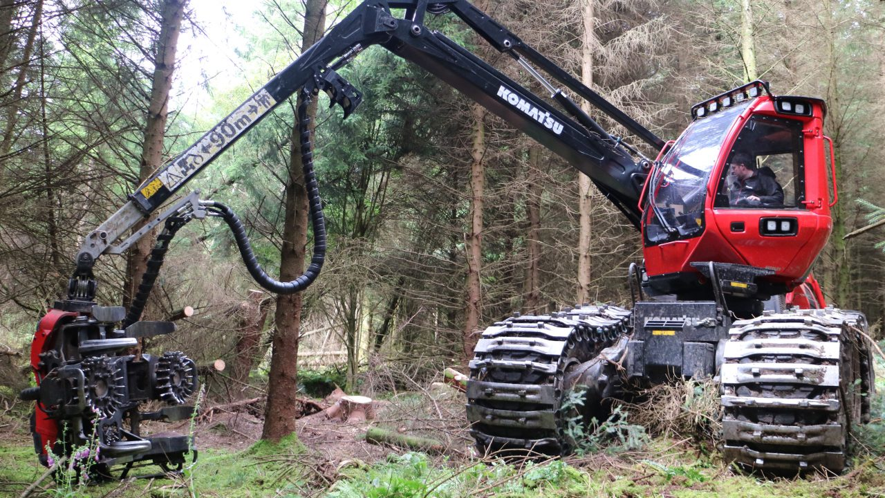 Forestry felling licence impasse causing 'crisis' in the industry