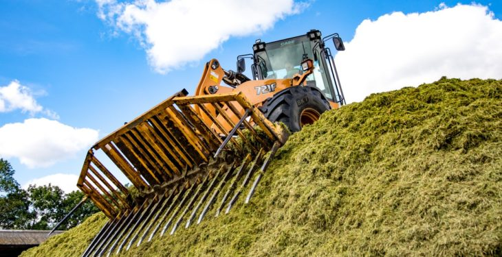 6m height limit urged to improve silage pit safety