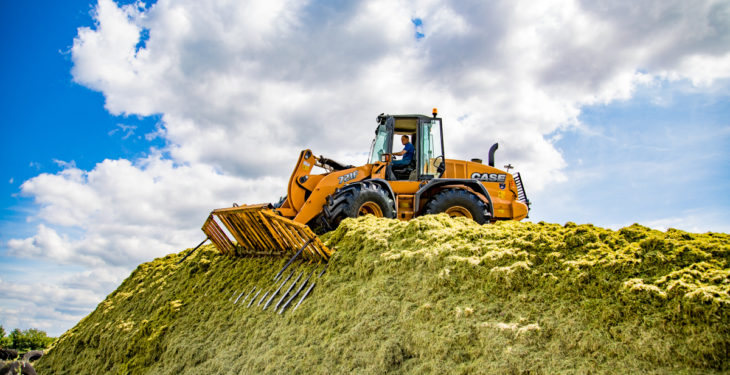 Cut to Clamp: Do I need a silage additive and is my pit packed correctly?
