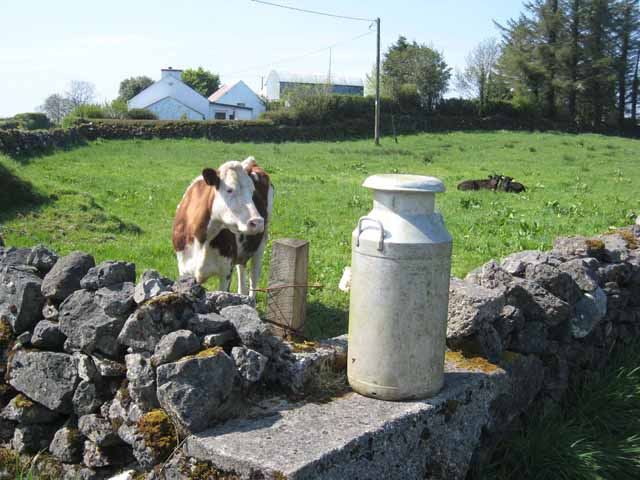 Milk suppliers call for end to 'low and slow' approach to passing on better prices