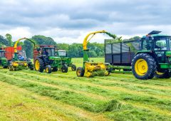 Silage weather in store with +20° temperatures expected