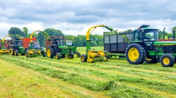 Silage extravaganza: 50 pics showing an army of harvesters in action