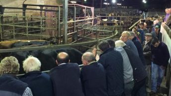Sale of major livestock mart edges closer