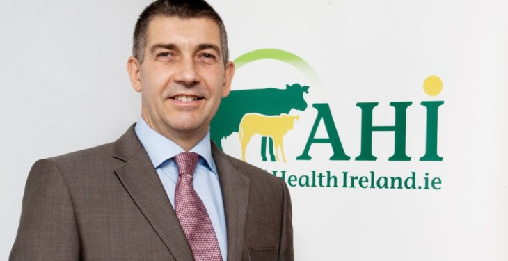 Animal Health Ireland appoints new CEO