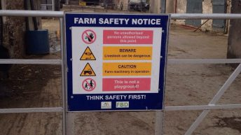 New CAP likely to include mandatory farm safety measures