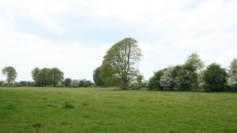 339ac of farm land makes €1.68 million at auction