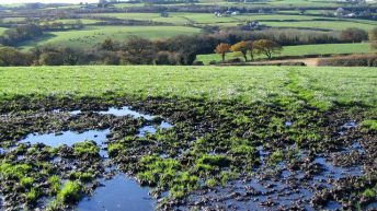 Soil drainage – is it worth the initial investment?