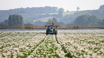 Emergency approval of blight fungicide for organic potatoes