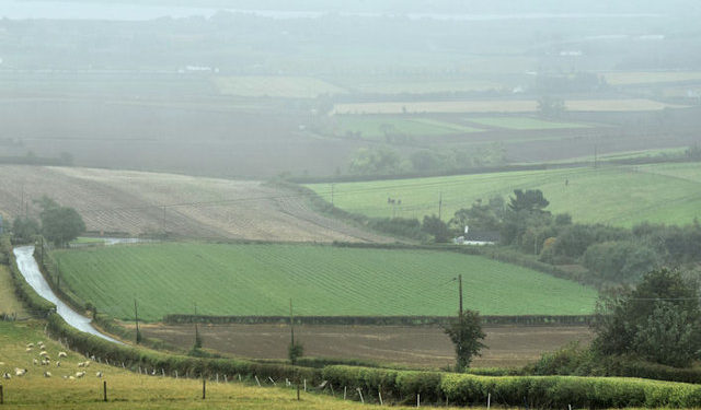 Prime arable land on the up: Sherry FitzGerald report