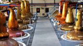Whiskey maturing facilites critical to expansion of sector – Creed