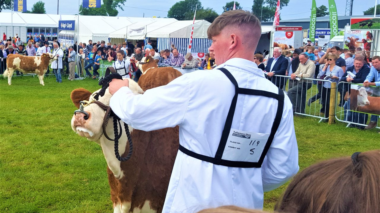Site map: Find your way around the 2019 Tullamore Show