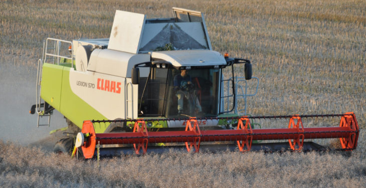'Farmer-owned co-ops must set sustainable prices for growers this harvest'
