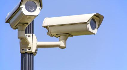 British farm organisation supports introduction of CCTV in slaughterhouses