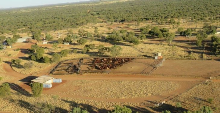 Pics: See the Australian cattle station that sold for $13 million