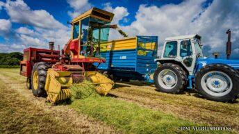 Pics: County fleet turns heads in 'County' Down
