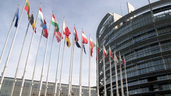 Agriculture MEPs reject cuts in the EU's farm policy budget