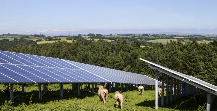 Planning permission granted for Offaly solar farm