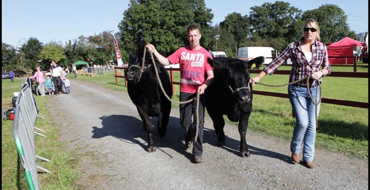 Iverk Show gets set to impress this Saturday