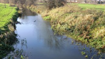 Construction company fined for waterway pollution