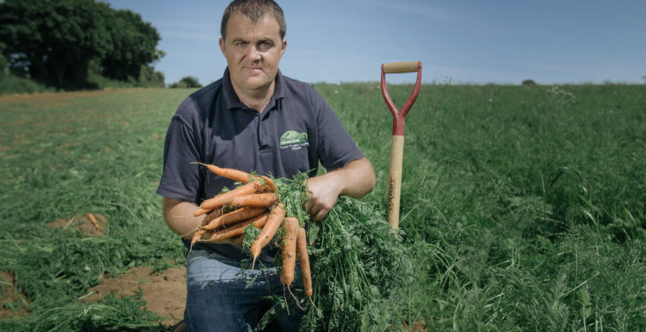Kilkenny family grows carrots business