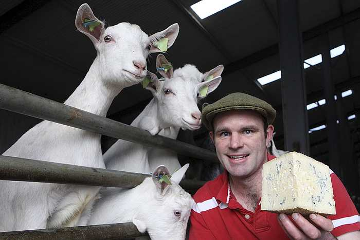 Awards roll in for Meath farmer's cheese enterprise