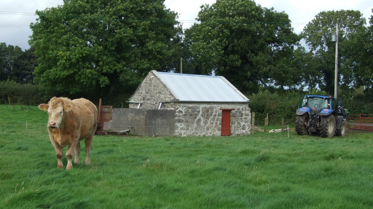 Heritage Week events for Irish farms