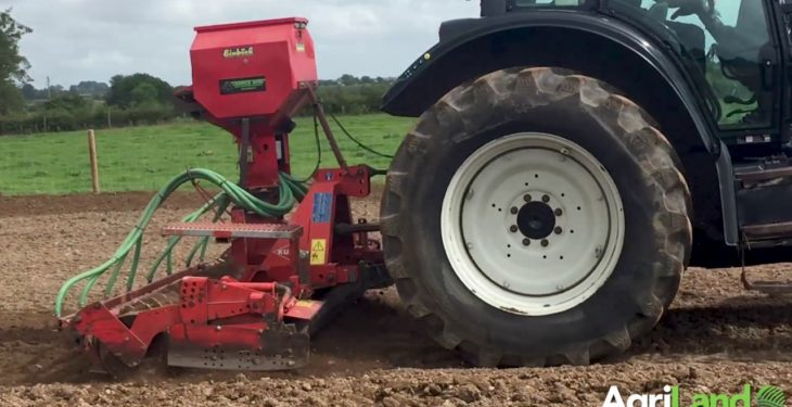 Video: Reseeding under the microscope in Mayo