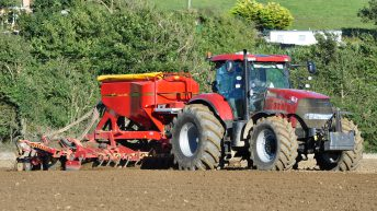 'It's madness to sow winter barley so early in the season'
