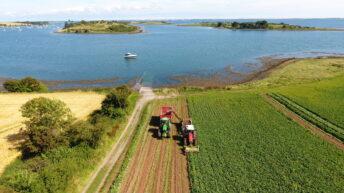 Bracing for Brexit: Innovative veg exporter details plans