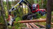 McHale Plant Sales gets Komatsu's forestry franchise