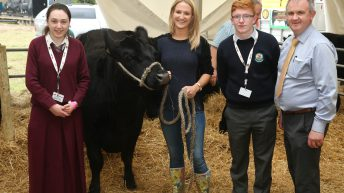 Applications now welcome to Irish Angus schools competition