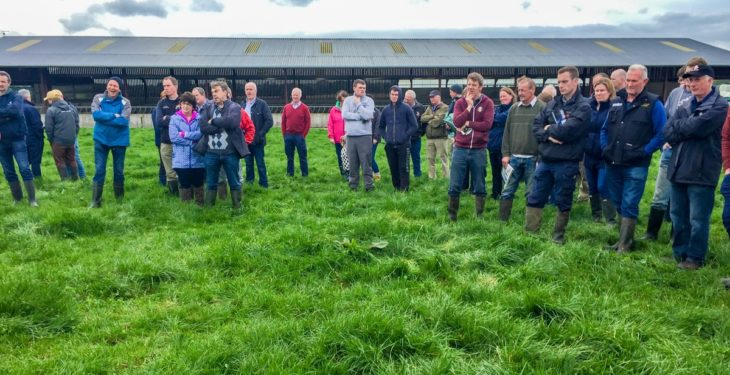 Meath farm walk to focus on benefits of farming sustainably