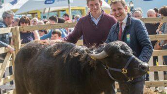 Westmeath's John Heslin sets 'goals' on time management