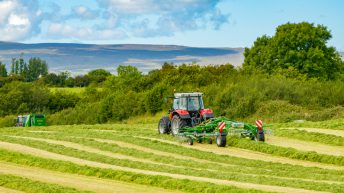 Grass growth: Finally we are all back on the same page