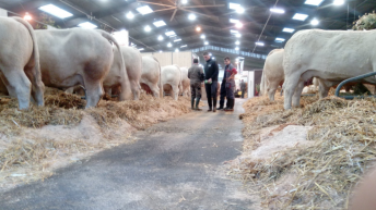 Irish agri-tech companies showcase to over 100,000 visitors in France