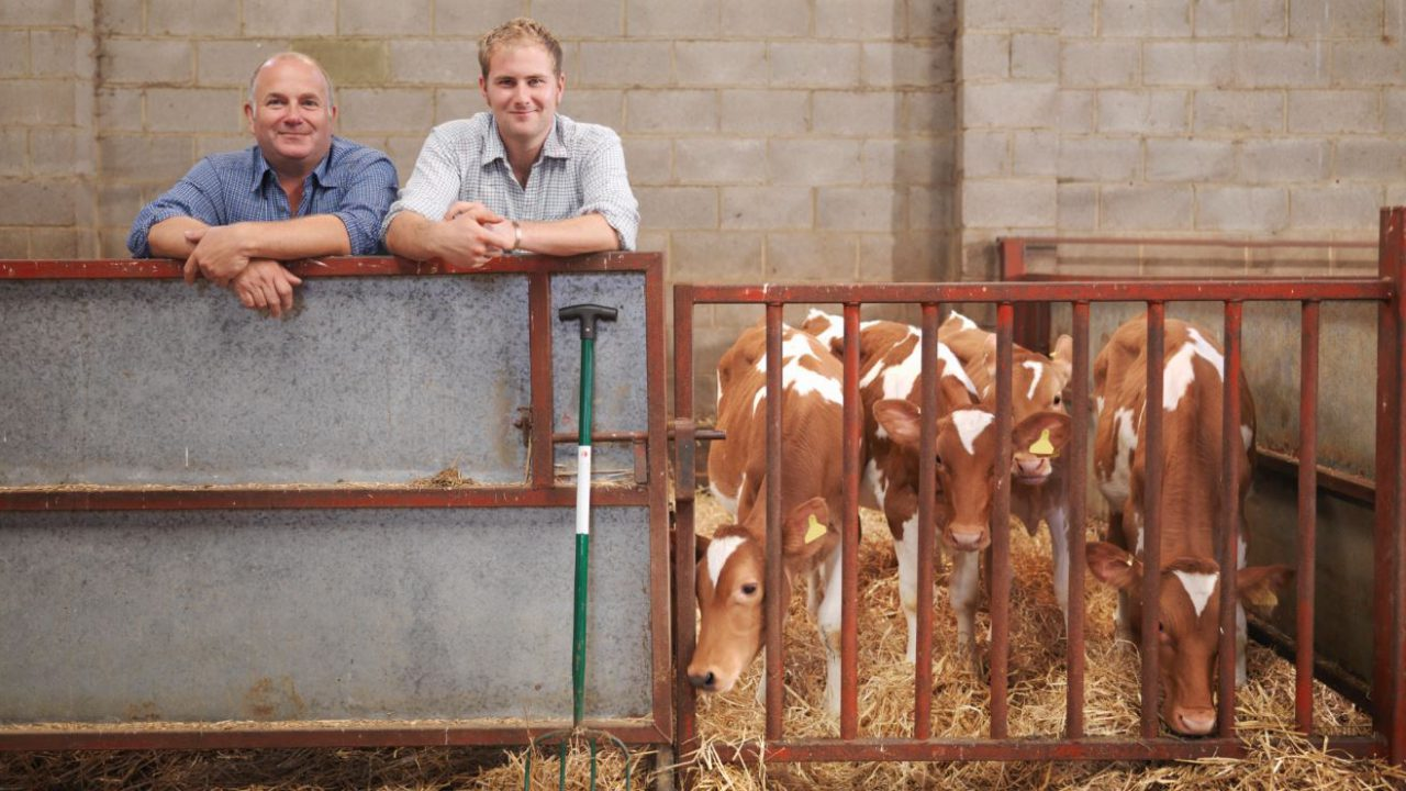 Having trouble with calf pneumonia on your farm?